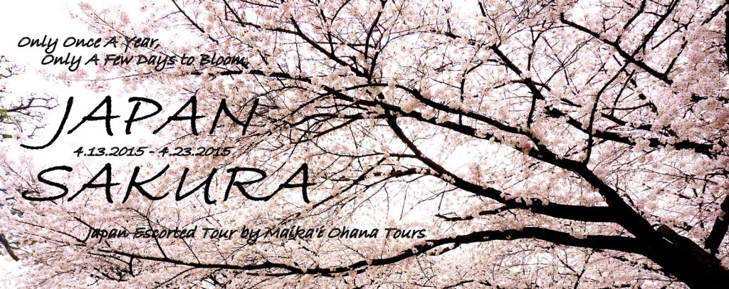 "Spring 2015 - Japan Escorted Tour ""SAKURA"""