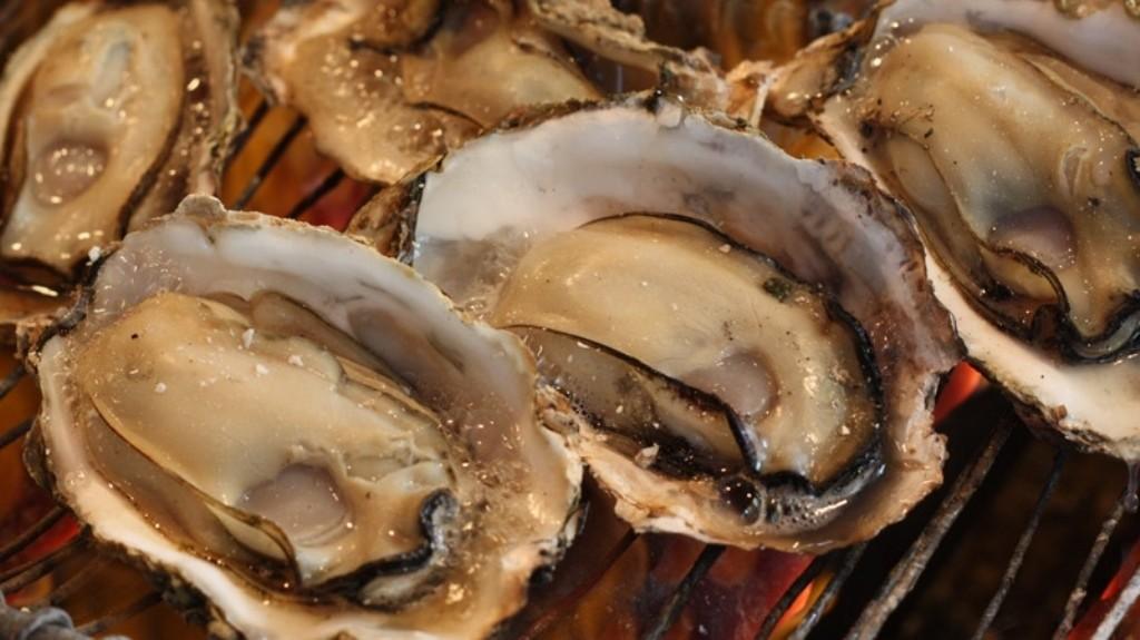 Hiroshima Oysters!